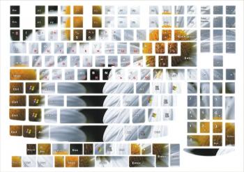 Наклейки декоративные на клавиатуру Ромашки